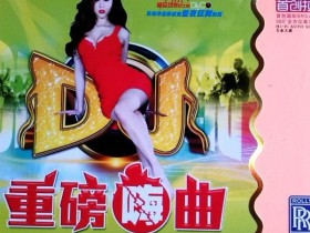 金曲大碟《重磅嗨曲夜场顶级中文DJ》2CD 感人肺腑的情歌 d003