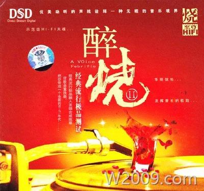 极品测试《醉烧Ⅱ DSD》经典流行 p021